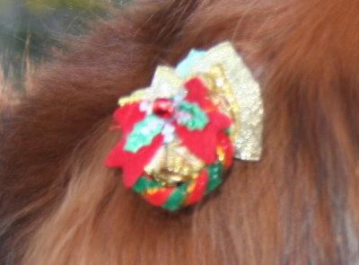 犬用クリスマスリボン画像