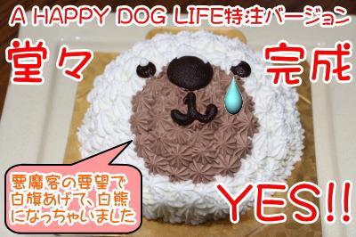 オランダ家特注A HAPPY DOG LIFEバージョン画像