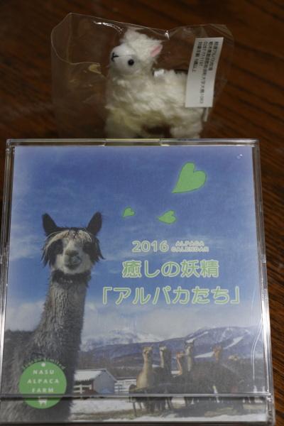 栃木県那須、アルパカ牧場画像