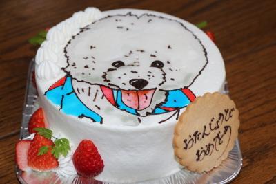 犬のケーキ画像
