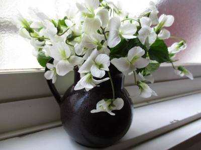 白スミレ花瓶