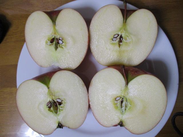 リンゴ上半分