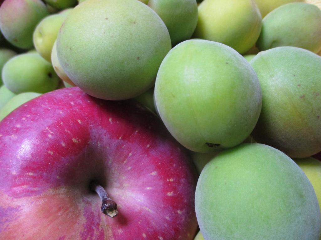梅とリンゴ