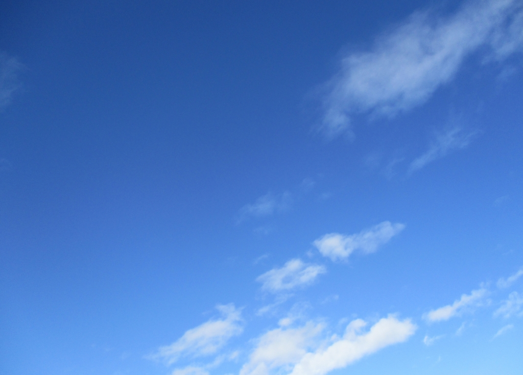 2月1日の空