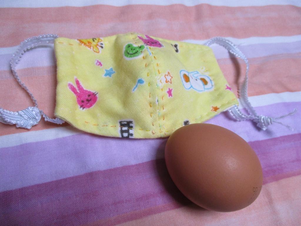 マスク卵と比較