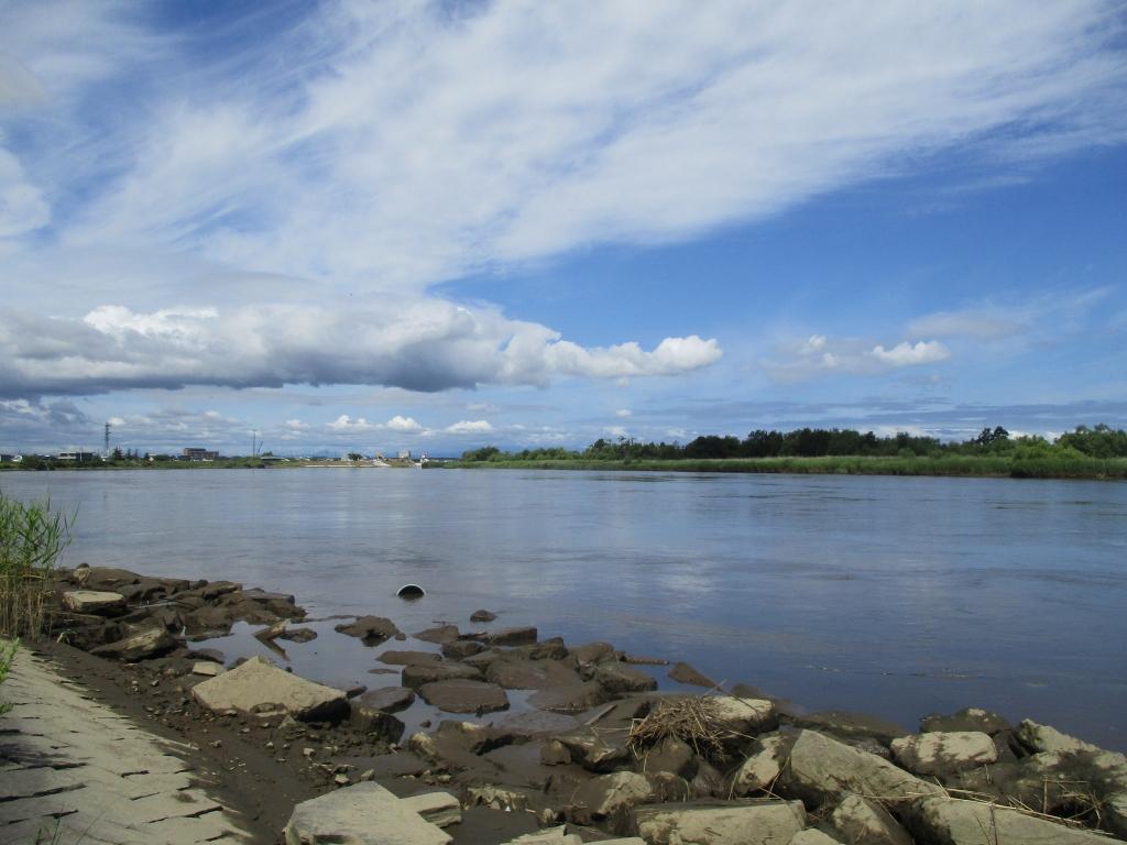 北上川引き潮