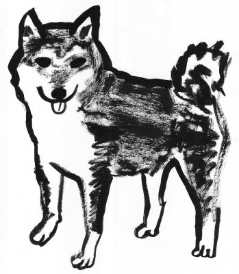 13犬1.jpg
