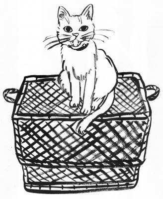 62荷物の上の猫1.jpg