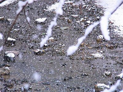 2月の雪1