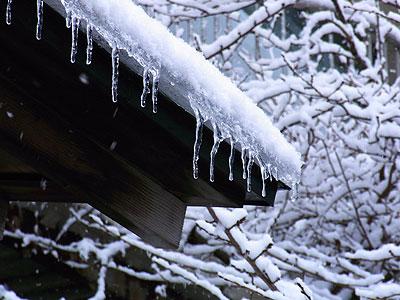 2月の雪3