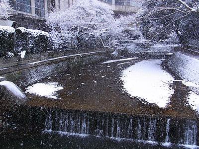 2月の雪5