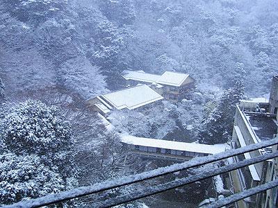 2月の雪6