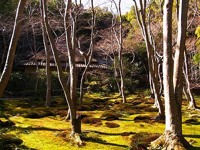 嵯峨野嵐山3