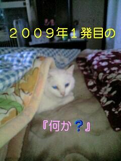 090104_0922~0001-0001.jpg