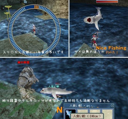 サメの位置