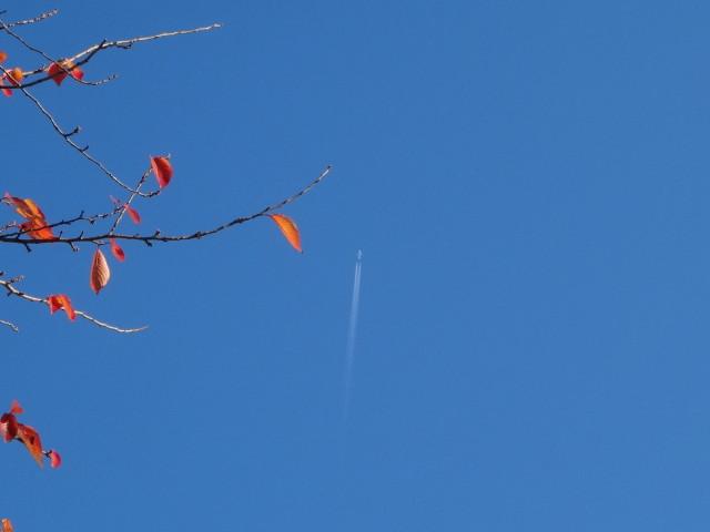 初冬の青空に飛行機
