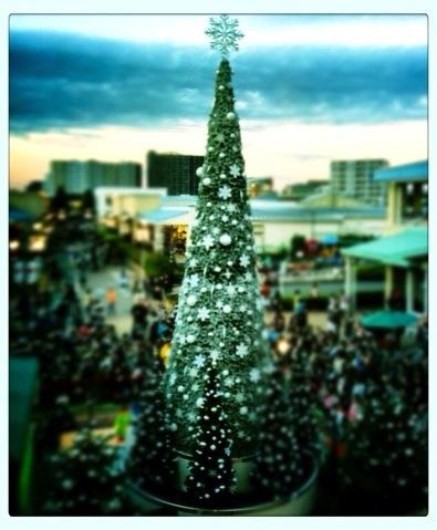 クリスマスツリー 写真