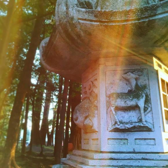 鹿島神宮,アニャン