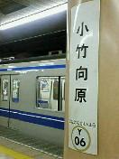 20060524_187973.jpg