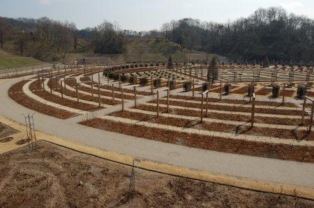 閑散とした花フェスタ記念公園