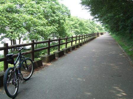 木曽川扶桑緑地公園2