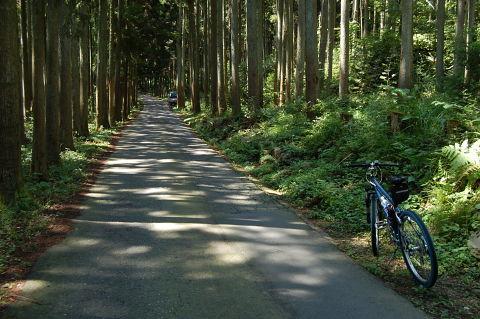 長良川サイクリング2