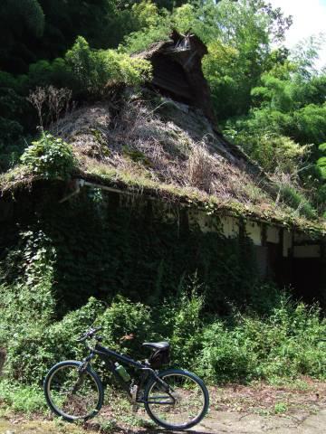 月出集落藁葺屋根