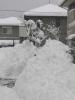 大雪その1