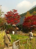 近隣湖の紅葉