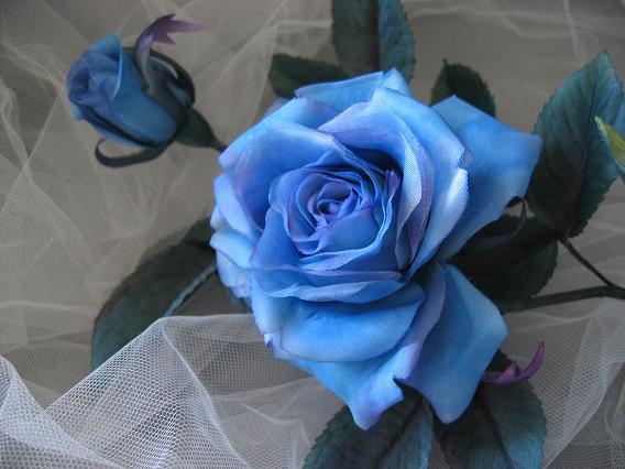 はじめまして *〜blue rose〜*