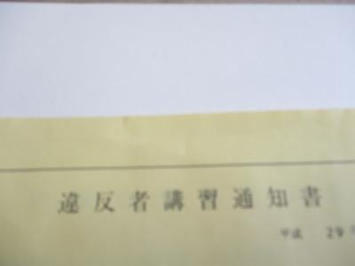 IMG_1900.JPG
