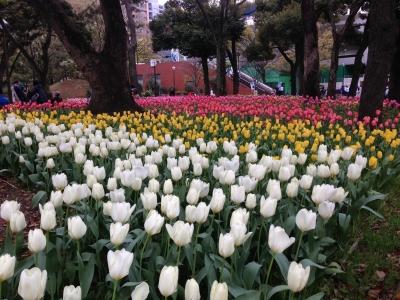 2015-04-04 12.58.32.jpg
