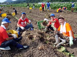 日本一の芋煮会山形の地物土垂里芋掘り