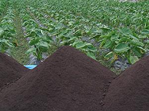 EM豚堆肥追肥