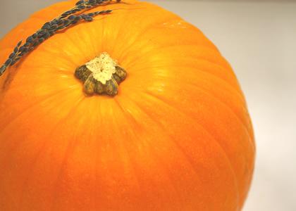 お化けかぼちゃ・オータムゴールド