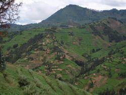 農村地の風景