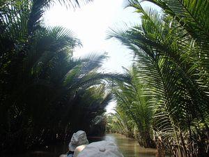 Mi Thoのメコン川