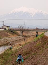 大蜂川河川敷