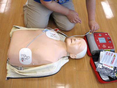 AED パッドの位置