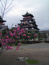伏見桃山城 2009年