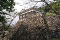 伊勢亀山城(2010)