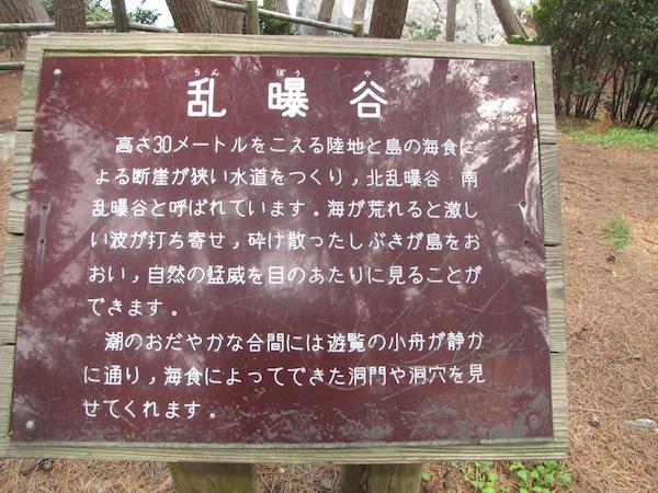 goishikaigan061309