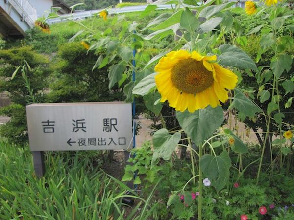 yoshihama090505