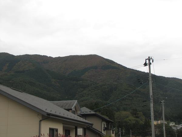 natsumushi02608