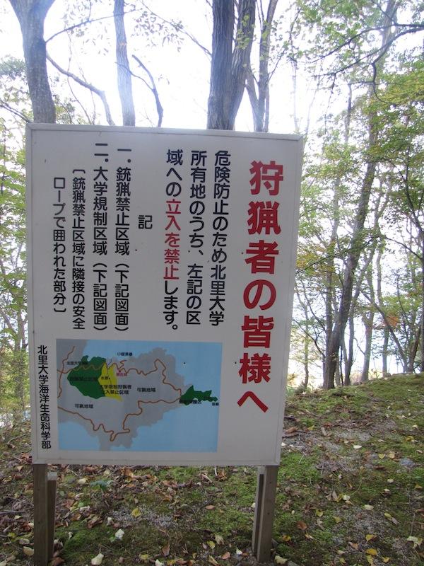 kobesaki110725