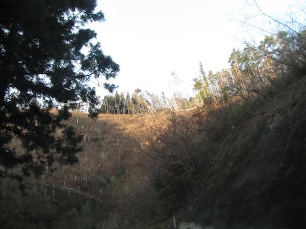 arashi120519