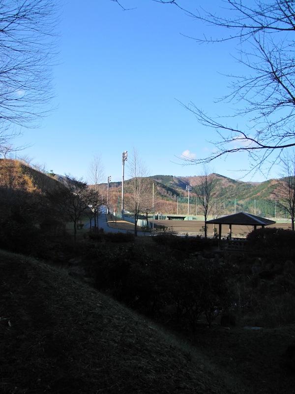 ryouri120610