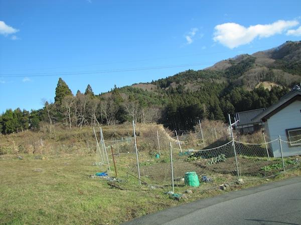 sakihama121801