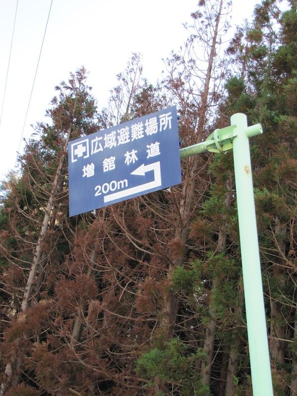 yoshihama122037