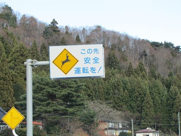 yoshihama122044